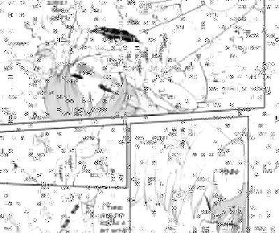 Houkago Palpitation - part 2